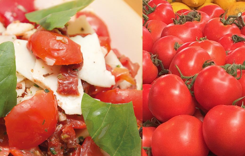 Tasty Tomato Sauce - Rossa di Gusto