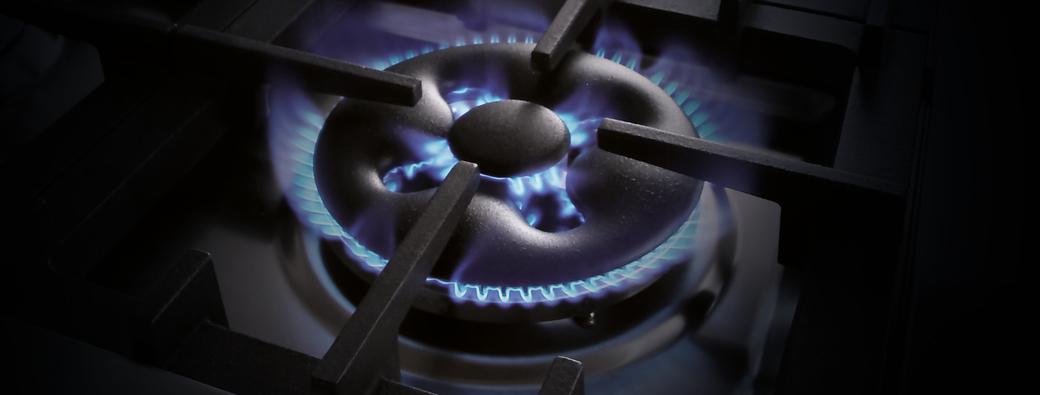 DUAL burner with DUAL control
